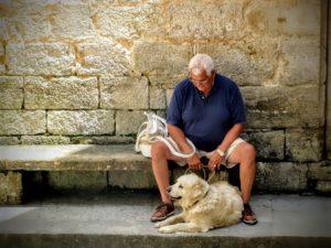 Senioři by měli být osvobozeni od poplatků za psy.